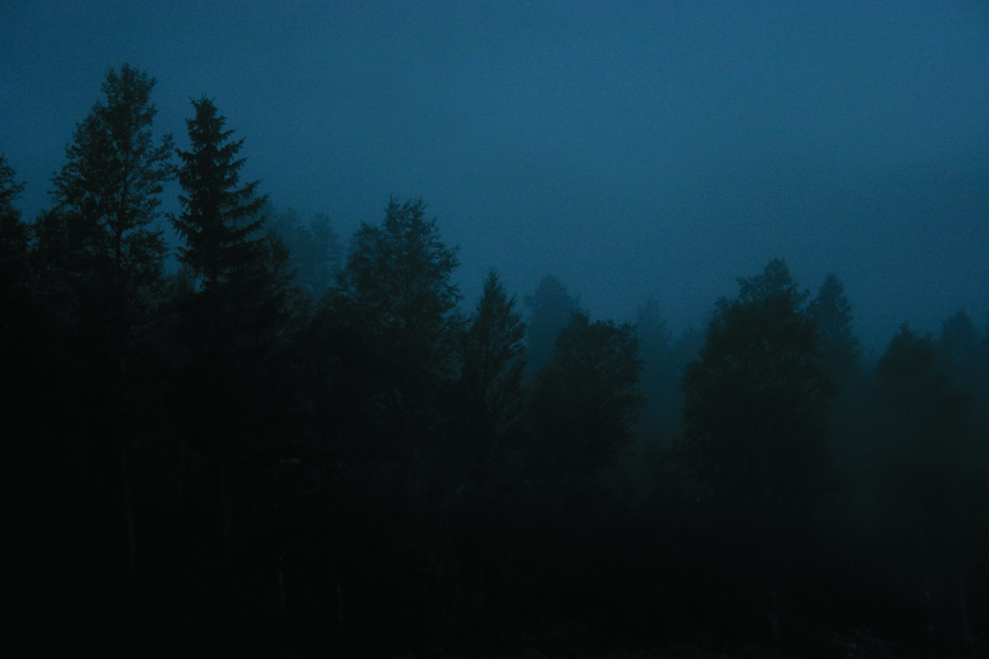 Scandinavian_forests_trees_of_darkness_helsida
